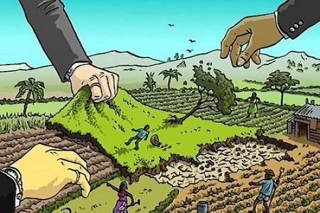 Khi không có giấy tờ thì thủ tục giải quyết tranh chấp đất đai như thế nào ? - 1